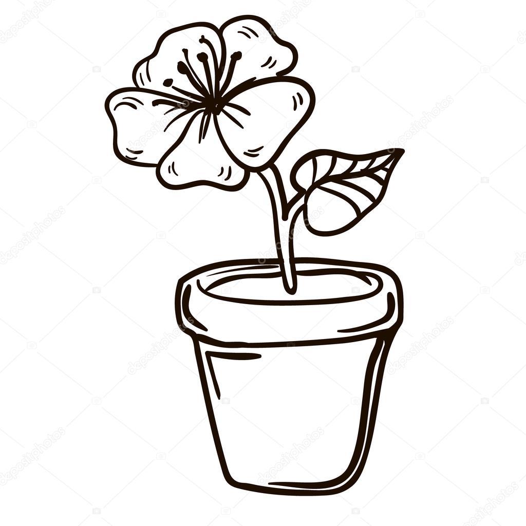 картинки как нарисовать цветок в горшке чердаке