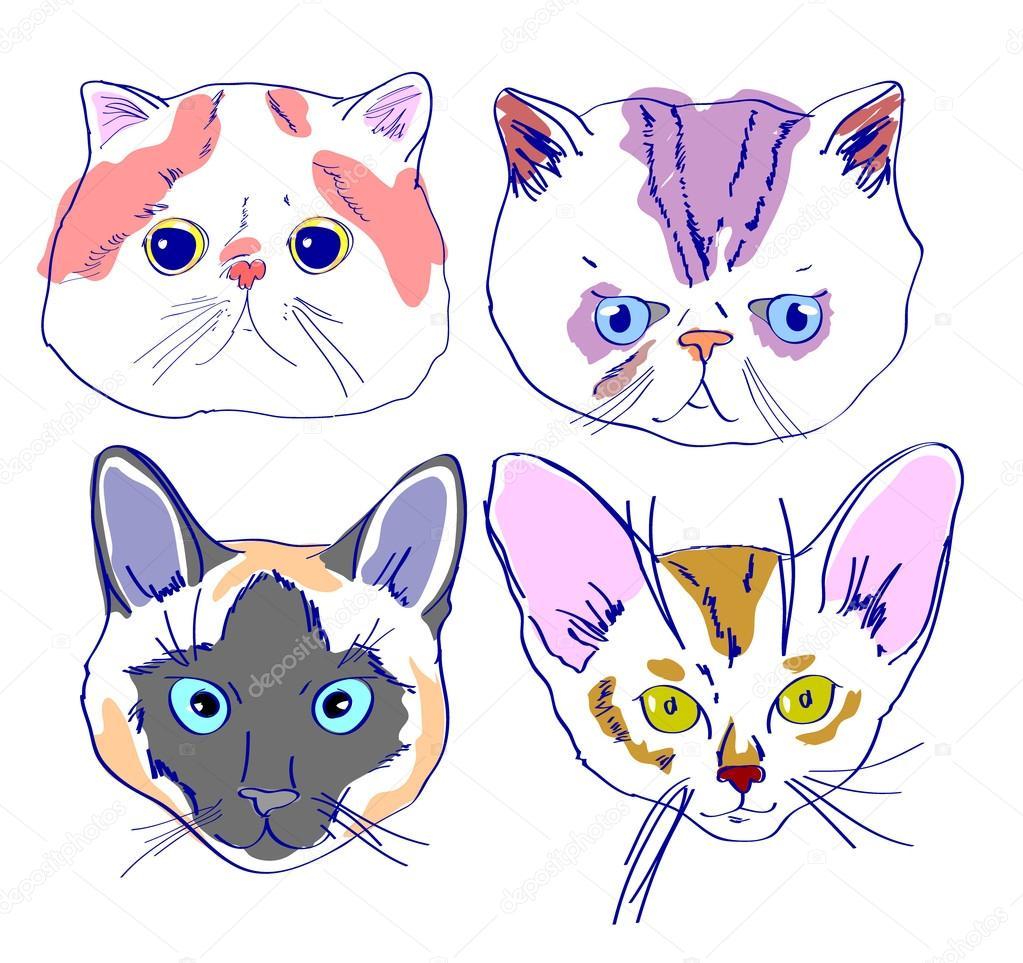 Dibujos Caras De Gatos Caras De Gatos Dibujo En Estilo De