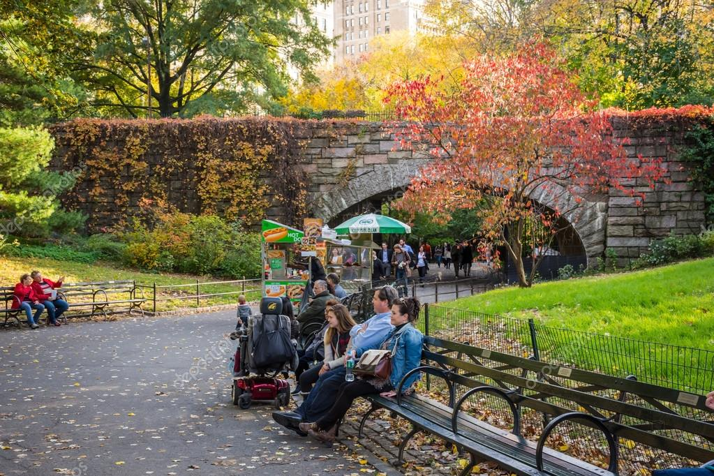 Park Bench Central Park Stock Editorial Photo C Andykazie 90153338
