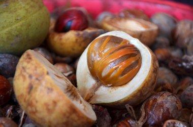Ripe colorful nutmeg fruit