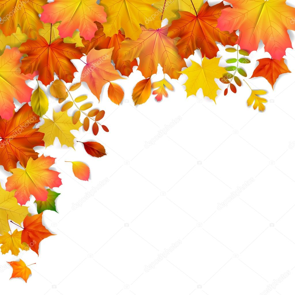 カラフルな秋もみじフレームベクトル イラスト ストックベクター