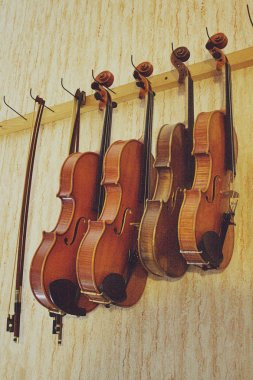 Group of Violins hanging on wall