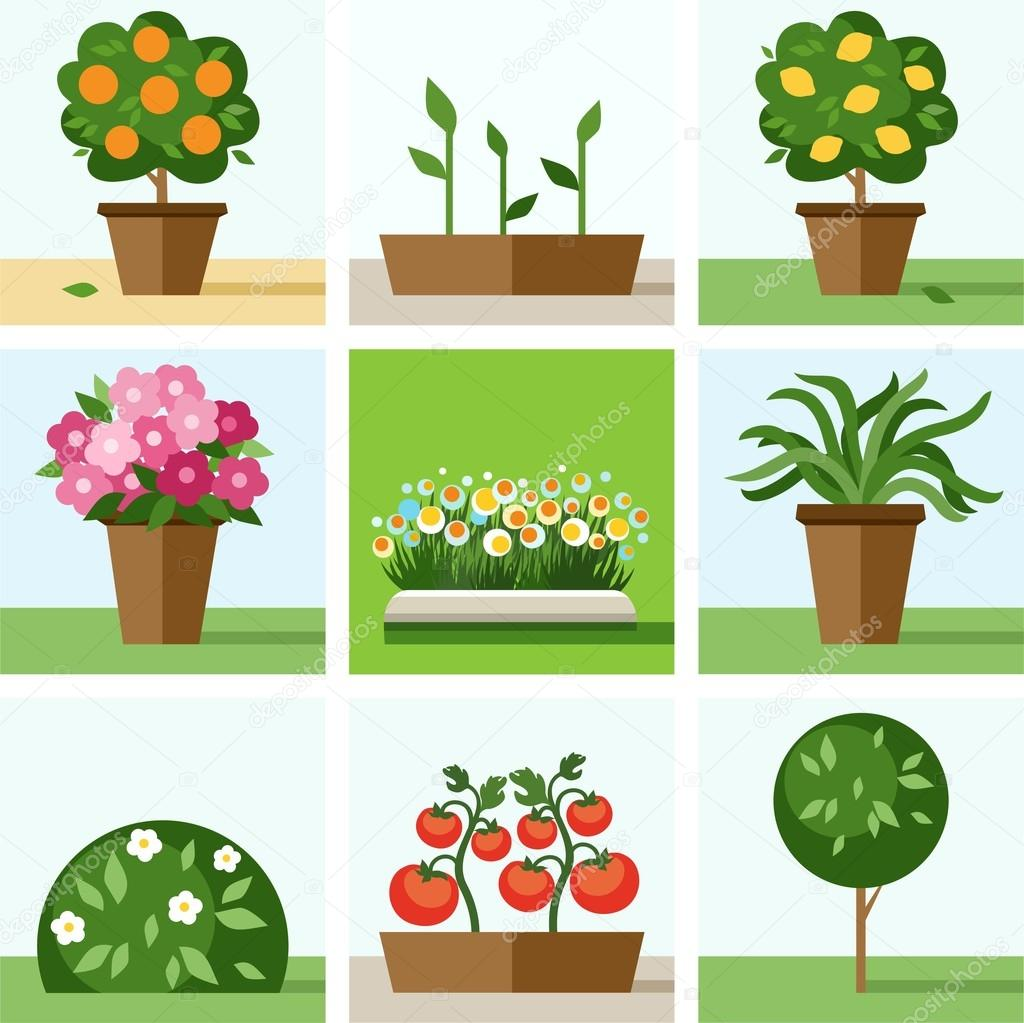 Garden, vegetable garden, flowers, trees, shrubs, flower beds, icons, colored.