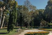 Květiny na záhonu u stromů a lavic v parku