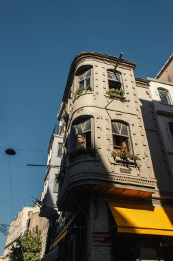 Low angle view of plants on facade of building on urban street in Istanbul, Turkey stock vector