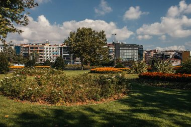 Flowerbeds on meadow on urban street in Istanbul, Turkey stock vector