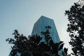 alacsony szög kilátás felhőkarcoló közelében fák ellen tiszta ég