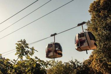 Cable car near green trees, Istanbul, Turkey stock vector