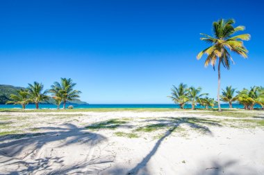 Entrance to one of the most beautiful tropical beaches in Caribbean, Playa Rincon, near Las Terrenas in Dominican Republic, with palm trees shadows and amazing sea