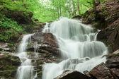 horská vodopád s kamenité dno