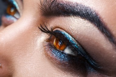Female brown eyes looking away with make up. Macro photo