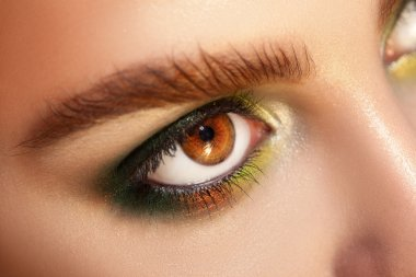 Horizontal macro photo of brown eyes with green colors makeup