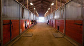 Fotografie Center Path Through Horse Paddock Equestrian Ranch Stable