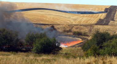 Farmers Working Controlled Burn Intentional Agricultural Fire