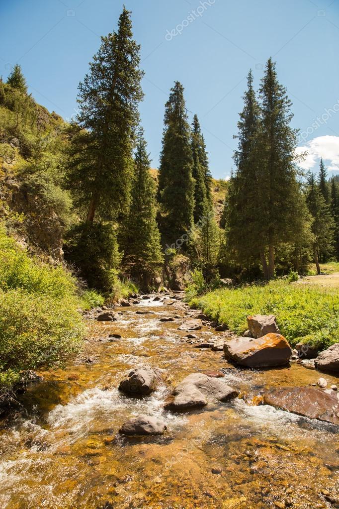 Assy plateau in Tien-Shan mountain in Almaty