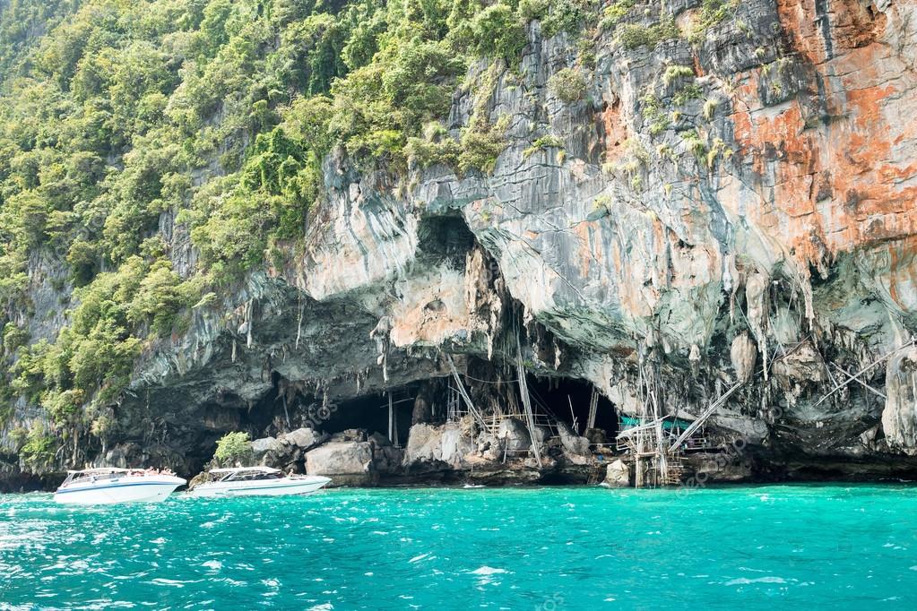 Viking cave where bird's nests