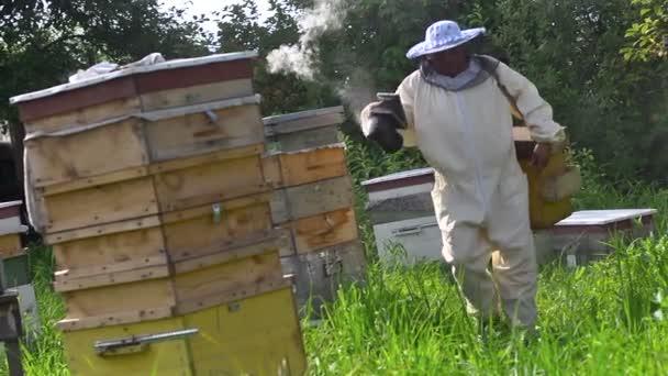 Včelař v ochranné masce