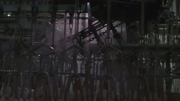 Kuře v továrně na zpracování