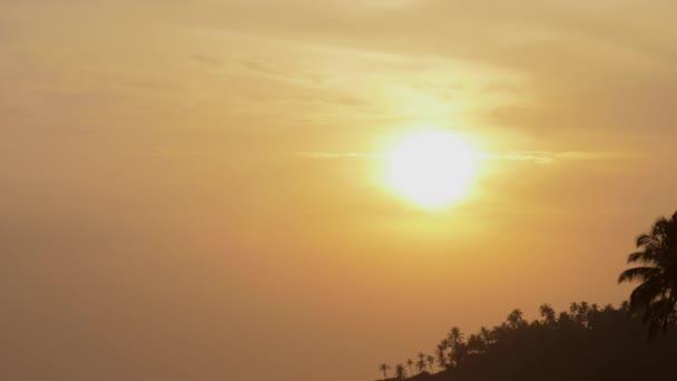 Jasné slunce na večerní obloze a siluety palem