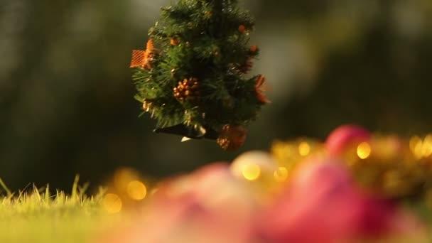 Girl puts Christmas tree