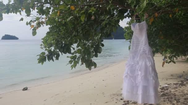 Bílé svatební šaty na stromě