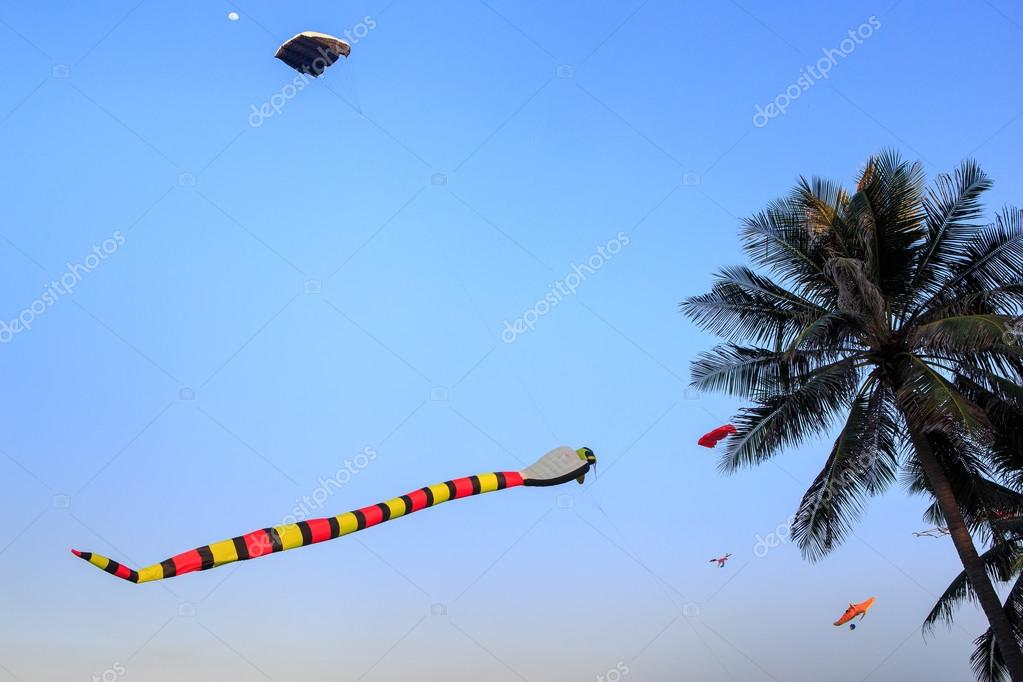 kites of different shape