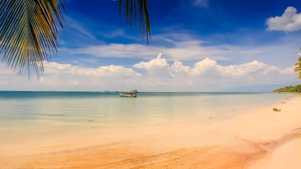 písečná pláž s palmami