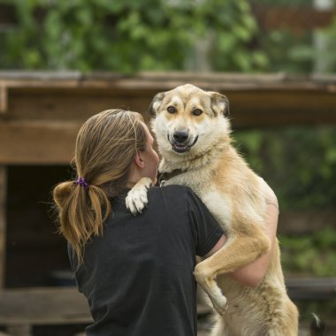 Young girl hugging a dog