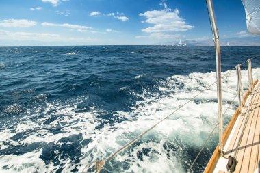 Sailboats participate in sailing regatta