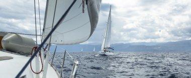 Sailboats sailing in regatta