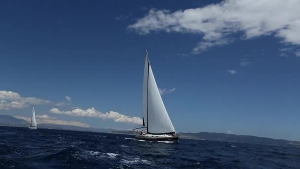 Plachtění ve větru vlny