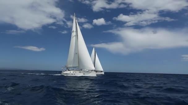 Jachty plachetní loď