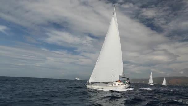 Vitorlás yacht race