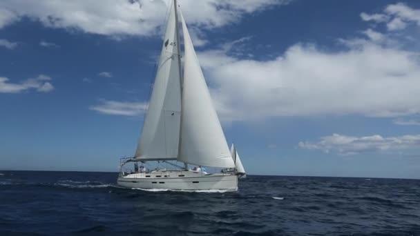 plachetnice účastnit plachetnic
