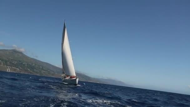 Jachty v plachetnic