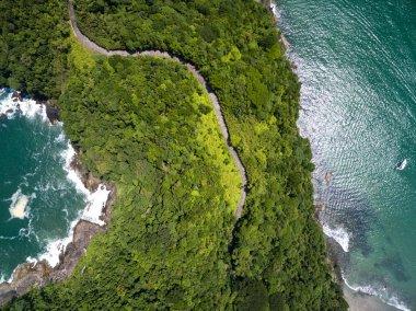 Exotic Hill in Brazil