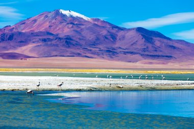 Atacama Desert in Chile, South America
