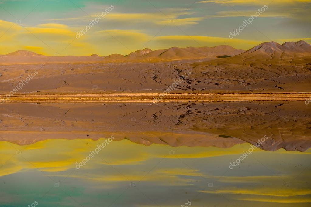Atacama Desert with Flamingos