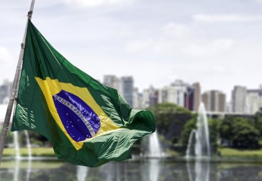 Brazilian waving flag in Sao Paulo