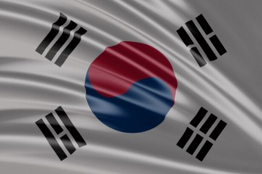 Amazing Flag of South Korea