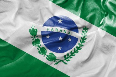 Flag of the State of Parana
