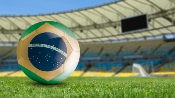 Brazilian soccer ball on the field