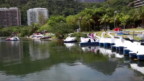 laguny Rodrigo de freitas v rio de Janeiru