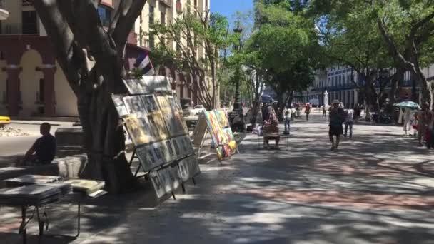 Gyönyörű fákkal szegélyezett utcában, Havannában