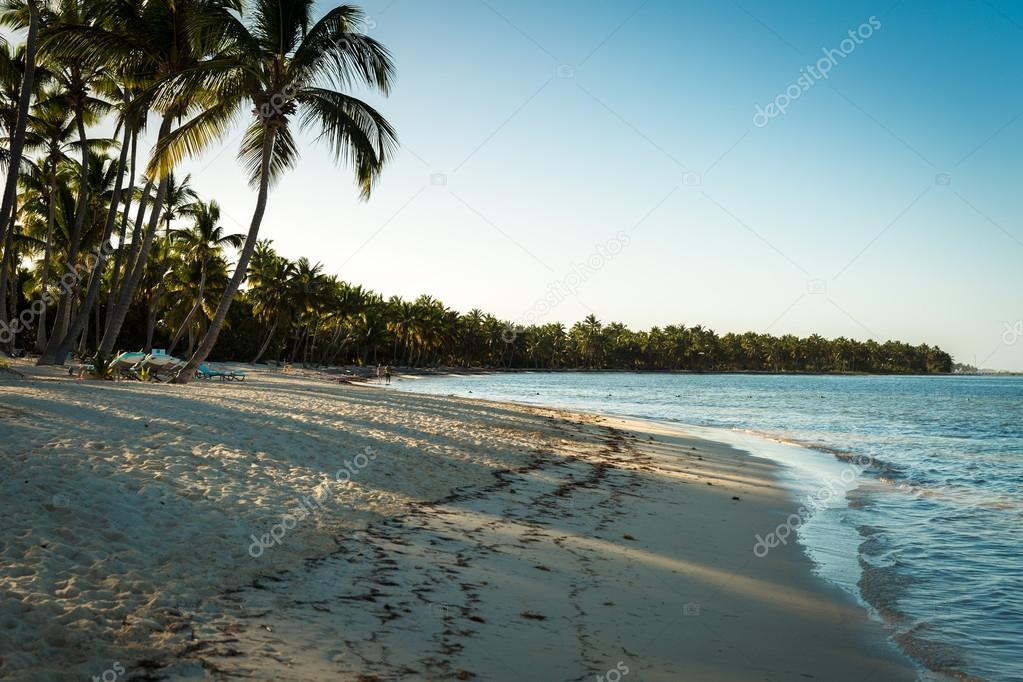 Tropical beach in a sunny day