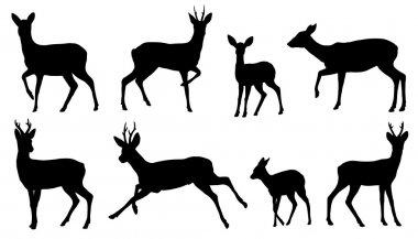 roe deer silhouettes