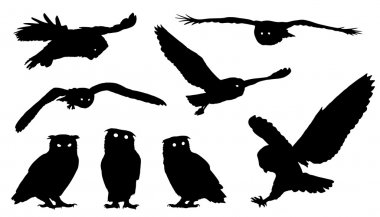 owl silhouettes