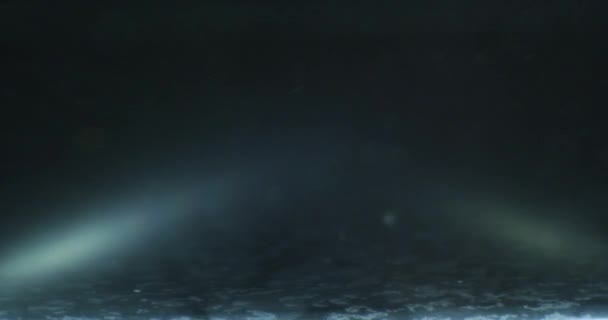 Ropy klesne, plovoucí ve vodě nad barevné underground se olejomalba
