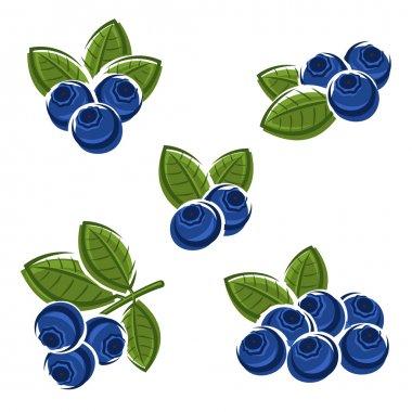 Blueberries set