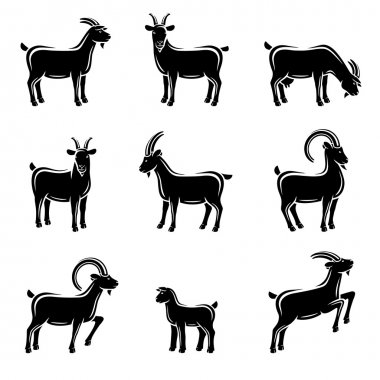 Goat set